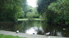 P1010832 (J. Prat) Tags: stephen green park