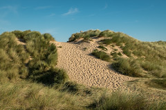 Dune delight.... (AJFpicturestore) Tags: dune sanddunes norfolk alanfoster burnhamoverystaithe