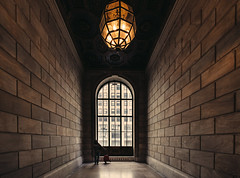 All the Lonely People (Dj Poe) Tags: ny nyc newyork newyorkcity city library newyorkpubliclibrary candid cinematic cinema color tones andrewmohrer djpoe 2016 sony voigtlander sonyilce7rm2 voigtlandersuperwideheliar15mmf45iii super wide 15mm f45 heliar manhattan midtown