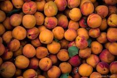 Apricots (somabrata) Tags: leh ladakh jammuandkashmir himalaya highaltitude apricot orange fruit desertfruit juicy taste lehmarket himalayanfruits freshfruit fruitmarket background wallpaper