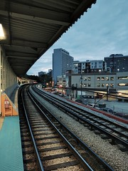 South (ancientlives) Tags: chicago illinois usa loyola train trainstation elevated rogerspark evening sunset friday tracks travel transport october autumn 2016 streetphotography cta
