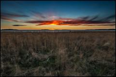 d Sand (Jonas Thomn) Tags: grass grs sea hav havet moln clouds sunset solnedgng sky himmel vass reed reeds islands ar vatten water longexposure nd32 nd400 3min