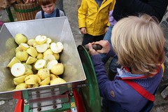 Child Using an Apple Scratter (Local Food Initiative) Tags: permaculture apple day apples press pressing cider group sustainable orchard scrat scratting crusher scratted pulper