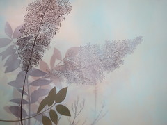 Nature Art, Ivy Jacobsen (shaire productions) Tags: sf artist image nature picture oil painting illustration tree plant elements floral flower leaves trees muted tones earth earthy art