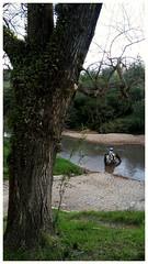 Passo (Darlan Corral) Tags: arroio cavalo gacho rvore natureza piratini riograndedosul