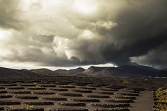 The sun doesn't always shine in Lanzarote! (Jo Evans1 - Off and on for a while) Tags: lanzarote la geria wine vineyard stormy sky looks like volcano clouds rain