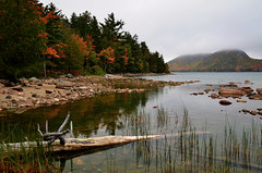 (The Pootie (Lisa)) Tags: acadianationalpark nationalparks autumn fall lakes ponds driftwood grass reflections trees pines maine nikon rocks pebbles mountains sky