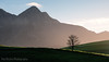 Simple Sunrise Scene (Panorama Paul) Tags: paulbruinsphotography wwwpaulbruinscoza southafrica westerncape greyton overberg riviersonderendmountains theoaksestate tree nikond800 nikkorlenses nikfilters