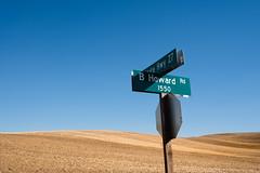 Which way to go? (Sunny Herzinger) Tags: palouse corn washington travel autumn field america fall usa moscow unitedstates us