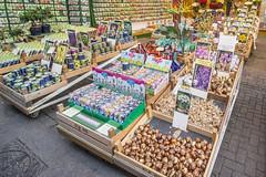 IMG_9253 (digitalarch) Tags:  netherlands  amsterdam  bloemenmarkt