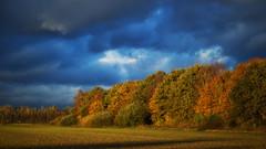 Autumn Sunset (patrickmai875) Tags: autumn herbst blue blau yellow gelb green grn landscape landschaft sunset sonnenuntergang love liebe clouds wolken sunshine sonnenschein canon 6d 85mm f12 nature natur art kunst ngc wow
