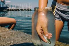 (Sakis Dazanis) Tags: pogradec albania sakisdazanis streetphotography lake ohrid fish bowl