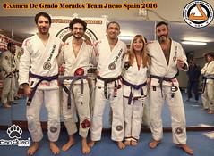morados2 2016