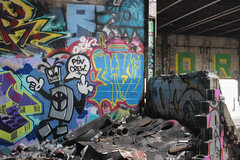 Naked, Oc (NJphotograffer) Tags: graffiti graff new jersey nj newark abandoned building urban explore shortys diy skatepark naked adhd crew oc mhs