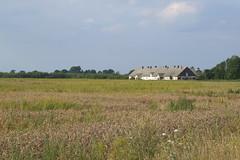 Bij. ferma, 30.07.2011.