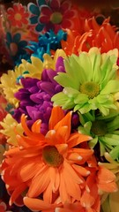 Flowers. (dccradio) Tags: lumberton nc northcarolina robesoncounty flowers floral foodlion painted dyed orange green yellow purple flower bouquet