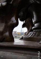 Effeil point of view (Hermann.Click) Tags: paris architecture histoire pont tour effeil history paysage city color