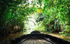 Somewhere nowhere on the Mekong (_gate_) Tags: mekong delta floating market boat dschungel jungle vietnam river fluss vietnamese nikon 1835mm ed d750 holiday urlaub november 2016 tour boot guided guide