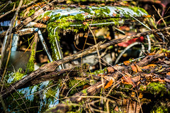 L1000903 (Bruno Meyer Photography) Tags: nature car rust abandoned colors green nowhere nevermindtheearth photography raw edit leica leicaimages leicacamera leicam240 leicacamerafrance nokton 50mm