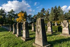 Erinnerung an die, die zurck blieben - Remember those, who stayed behind (ralfkai41) Tags: grabsteine friedhof graveyard russisch dresden cementary soldatenfriedhof gravestones russian grber graves
