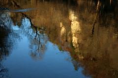 Am farbigen Abglanz haben wir das Leben (gripspix (OFF)) Tags: 20161130 reflections spiegelungen neckar river fluss bume trees fels rock sunny sonnig