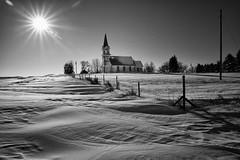 winters sun at tunbridge, Merry Christmas (journey ej) Tags: