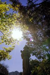 Son Silver West Gallery (K e v i n) Tags: trees arizona sun statue shop sedona az sonsilverwestgallery