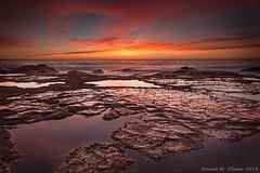 Bungan Point Sunrise (CowsGoM000) Tags: sunrise sydney mona vale bungan
