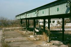 Terminal Before Trucking (Owl's Flight) Tags: abandoned film newjersey decay nj rusty terminal vacant oil disused pipeline southjersey tanks minoltax570 nps160 tankfarm ofp fujinps kevinhooa rokkor17