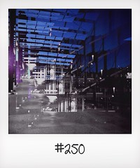 "#DailyPolaroid of 5-6-14 #250 • <a style=""font-size:0.8em;"" href=""http://www.flickr.com/photos/47939785@N05/14454938939/"" target=""_blank"">View on Flickr</a>"
