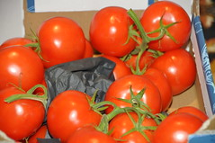 DSC_6469 Delicious D'vine Vine Ripe Tomatoes from Holland (photographer695) Tags: from holland price corporate for is box five tomatoes vine supermarket delicious only coop robbery per 32 turkish charging ripe reduced the dvine 199 180