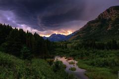 Rocky Mountain Roar (Osprey-Ian) Tags: alberta rockymountains watertonnationalpark southernalberta
