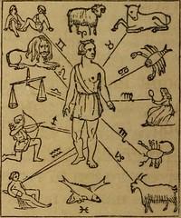 Anglų lietuvių žodynas. Žodis credulous reiškia a lengvatikis, patiklus lietuviškai.