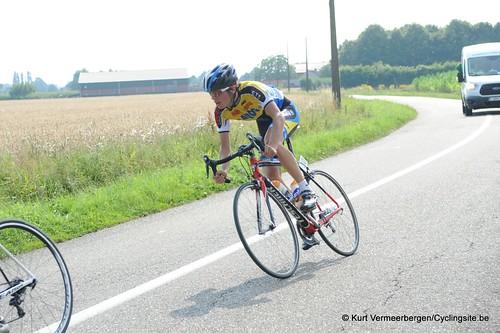 Geel Oosterlo  (204)