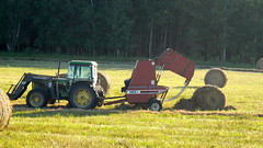 Making bales! (not without frustration!) (Jeannette Greaves) Tags: cow hugh ad land feed hay bales 2014