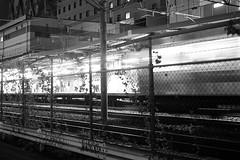 (m0r1) Tags: light station night train 35mm shibuya jr fujifilm fujinon yamanoteline saikyoline xe2 fujinonxf35mmf14r xf35mmf14r fujifilmxe2