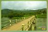 Silent Valley---------------42 (Binoy Marickal) Tags: india green tourism nature water rain kerala mala palakkad evergreenforest treaking silentvalleynationalpark nilgirihills mannarkkad mukkali kuzhur indiabinoymarickal