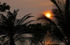"Historia de un Atardecer IV: ""La Timidez del Gero..."" (OctavioBJ) Tags: sunset sea sun sol beach mxico contraluz atardecer mar playa ixtapa guerrero octaviobj coth"