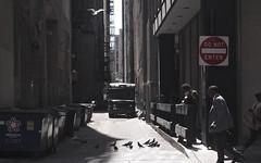 Chicago, 2014 (gregorywass) Tags: street summer chicago bird truck fly alley pigeon smoke sidewalk ups donotenter 2014