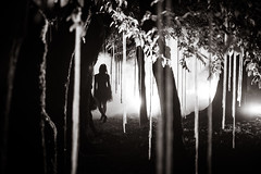 (maxlaurenzi) Tags: trees woman strange silhouette fog night dark walking woods gothic surreal fairy fantasy reenactment