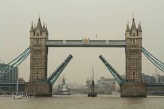 Greenwich Regatta 2014 (yve1964) Tags: london water thames towerbridge river boats boat sailing ships greenwich sailors regatta riverthames tallships greenwichregatta
