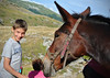 Amici (Gaia83) Tags: veterinarifotografi trekkingconimuli