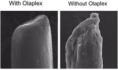 "Olaplex • <a style=""font-size:0.8em;"" href=""http://www.flickr.com/photos/69107011@N07/15012634756/"" target=""_blank"">View on Flickr</a>"