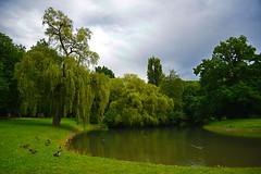 130_3036 (J Rutkiewicz) Tags: park clouds