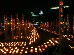 Mizu Akari Festival, Kumamoto, Japan  (Mr. Ansonii) Tags: festival japan lumix fire lights october asia downtown candles bamboo  moat carvings kumamoto kyushu      kumamotocastle mizuakari kumamotocity       katokiyomasa    kumamotoprefecture    tsuboigawa