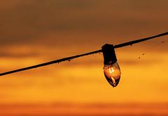 Light the mornin sky (joegilbreath) Tags: light sky color closeup bulb sunrise dawn lowlight warm alabama guntersville joegilbreath canont4ipictures
