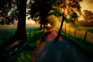 A bench at early morning!