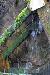 Moss and Slime (Jocey K) Tags: water stone moss australia queensland waterwheel goldcoast pacificfairshoppingcentre
