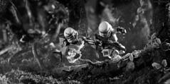 Behind enemy lines - closer view (Shobrick) Tags: motion toys star lego fig mini jungle stormtrooper wars shobrick