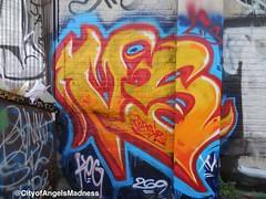 Versuz LTS KOG #versuz #vs269 #269 #lts #kog #lasttosurvive #killerofgiants #graffiti #losangeles #losangelesgraffiti #madness #cityofangels #cityofangelsgraff #cityofangelsmadness (cityofangelsgraff) Tags: graffiti losangeles madness lts cityofangels kog 269 versuz losangelesgraffiti vs269 killerofgiants lasttosurvive cityofangelsgraff cityofangelsmadness